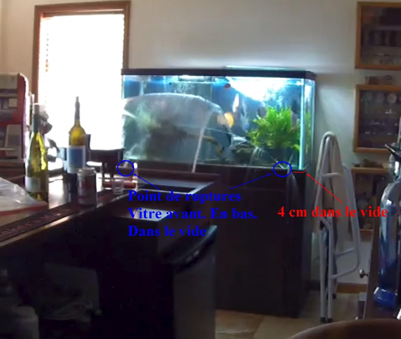 Aquarium à Discus qui pete d'un coup 1522583707-sans-titre-1