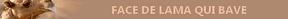 [Tombola] Découvrez vos cadeaux! 1529168548-facedelamaquibave