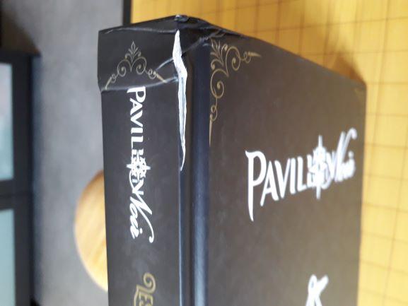 Actualité Pavillon Noir - Page 17 1531755503-b