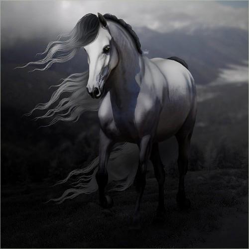 Description des Lieux et monstres présents 1534431269-cheval-sauvage