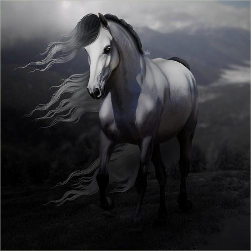 Description des Lieux et monstres présents 1534445415-cheval-sauvage