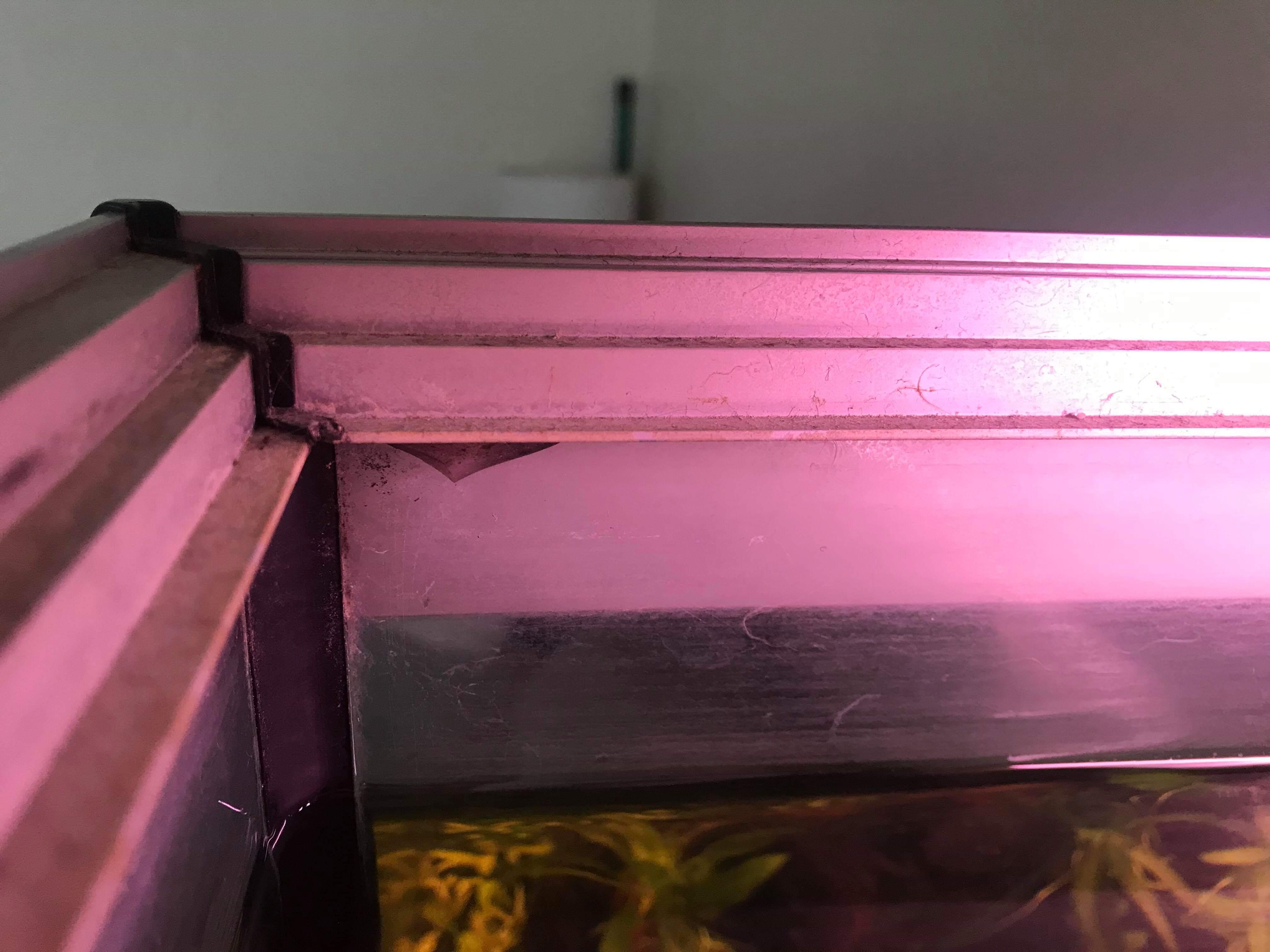 Couvercle d'aquarium démontable ?  1548334186-received-386017988610977