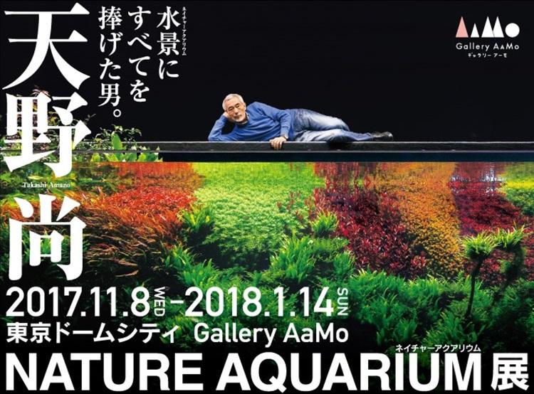 En mémoire à Takashi Amano 1554149246-nature-aquarium-tour-gallery-amano-3d