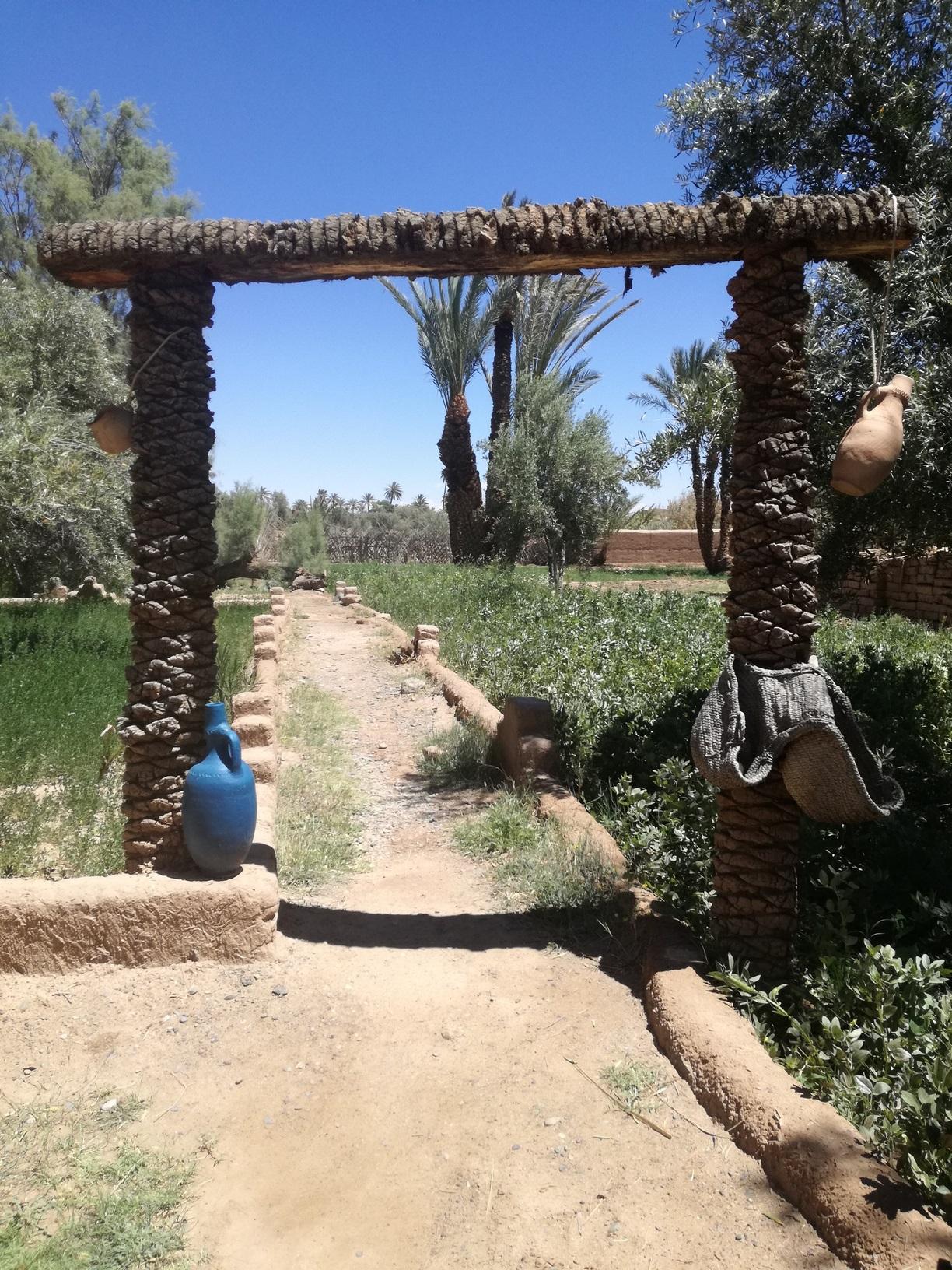 [Maroc Camp/Découverte] La ferme éco Tamelait 1556041212-img-20190419-132435