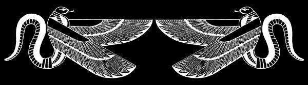 L'Alphabet à votre image - Page 9 1557057047-nsekinv-copie