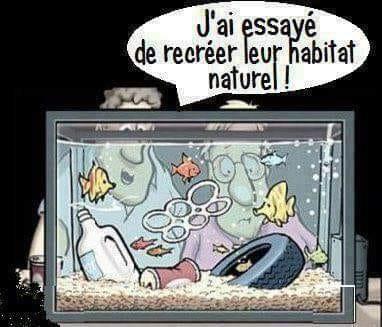 Images drôles - Page 2 1557952764-habitat