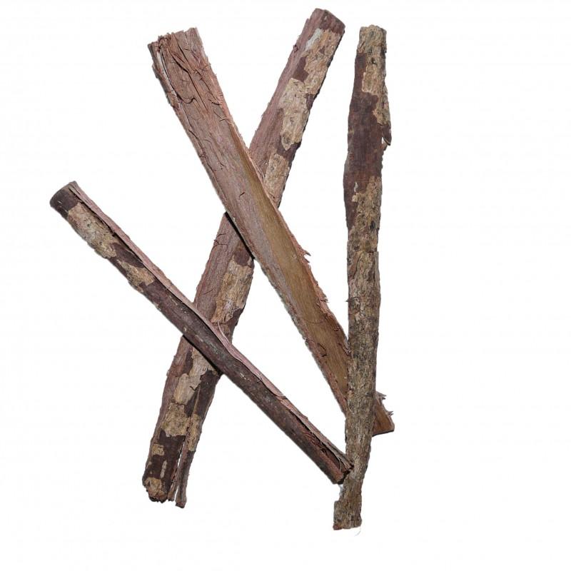 Utilisation d'écorce de Chêne 1558343209-ecorce-de-catappa