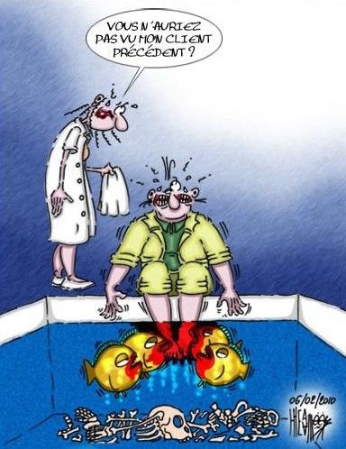 [DÉBAT] fish-pédicure : qu'en est-il du poisson?? 1563981134-pedicure