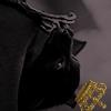 Harry Potter 1570828975-batsiecrownbat