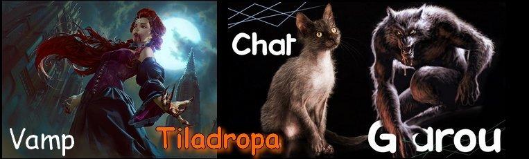 Les Créatures de Tiladropa