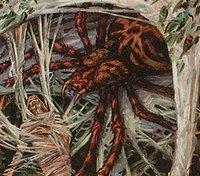 L'Araignée Sournoise 1592150667-araignee-sournoise