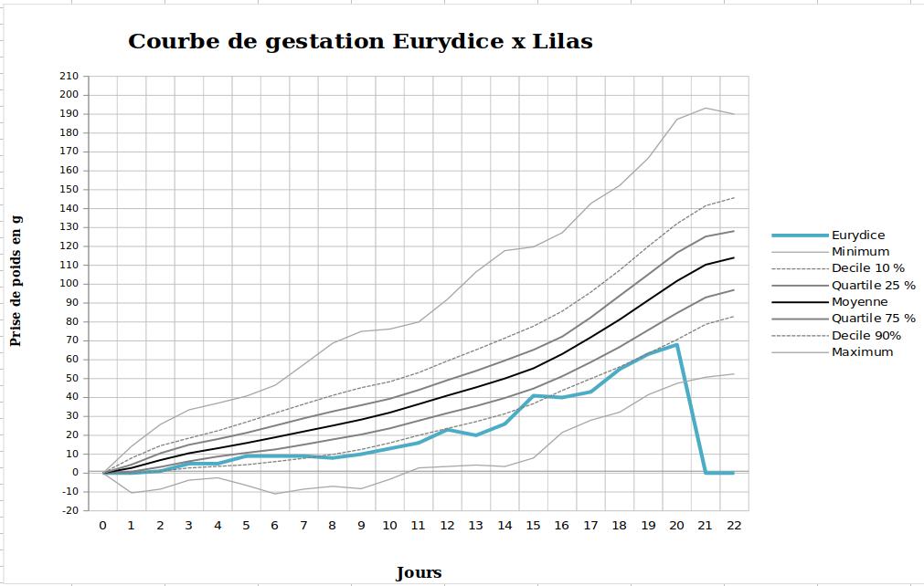 Portée OPR-DOU Lilas x DNA-DNR Marquise Eurydice 1615277199-capture-d-ecran-de-2021-03-09-09-06-29