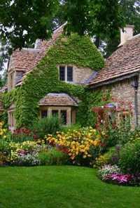 Biographie d'Oscar Bishop 1621153465-jardin