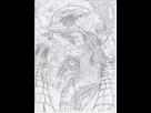 Galerie aquatique! 1419892323-croquis-poisson-volant-0001