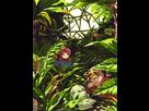Hunter/PreciousMetalShipping [Gold x Silver] - Galerie 1406379590-tumblr-m4earowfs71qckd2bo1-500