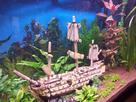 [Help] Achat poissons pour aquarium eau chaude 130 litres  1430747107-20150503-192656-richtone-hdr
