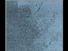 De la molécule d'ADN au chromosome  1443622319-adn-hors-divisions-cellulaire