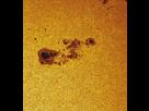ESSAIS HEBERGEUR 1456252760-trachouilles