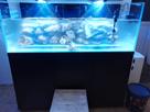 2nd Bac récifal de Max : 720 de Aquarium Systems 1482775060-img-20161226-185448-1