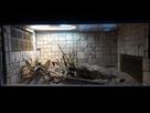 [Gekonia Chazaliae] Terrarium 1518189603-20180209-144342-resized
