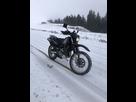 Topic Suzuki DR650SE sp 46 1548363235-photo-09-12-2018-12-51-56