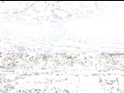 1552827674-f6ge.gif - envoi d'image avec NoelShack