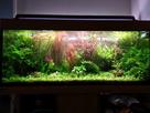 Guide pour le choix d'un éclairage LED 1563645656-aquarium-juwel-rio-125-led-meuble-chene-clair