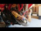 BETA 300 Xtrainer 2 temps à Graissage séparé - Page 13 1595244771-dsc-4968