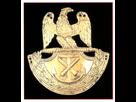 Plaques de shako, artillerie de marine 1601326926-marine-artillerie-de-marine-plaque-de-shako