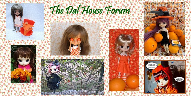 The Dal House