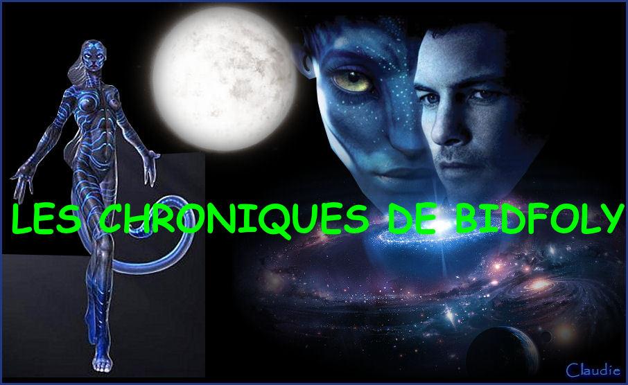 LES CHRONIQUES DE BIDFOLY