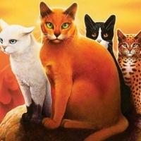 Коты воители ролевая|Новая судьба