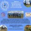 Marche Nordique OTOP® et Nordic Yoga®