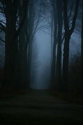 Le sentier des ténèbres