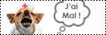 Forum Chihuahua : Mini Dog's Chihuahua 282457icone_sante