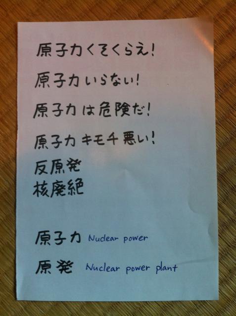 L'énergie nucléaire - Page 3 372820IMG2882