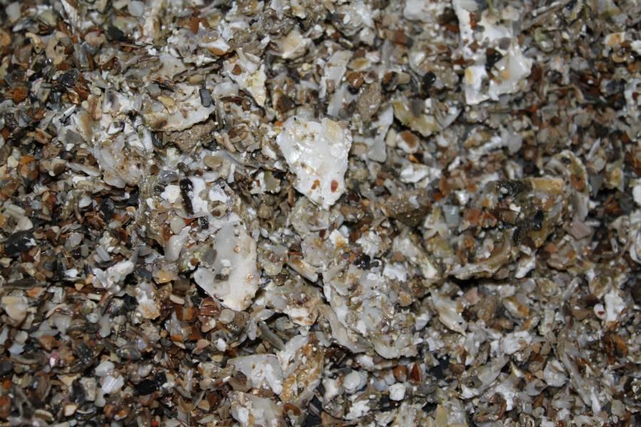 réalisation de pierres artificielle pour récifale 385753PXR_IMG_0011
