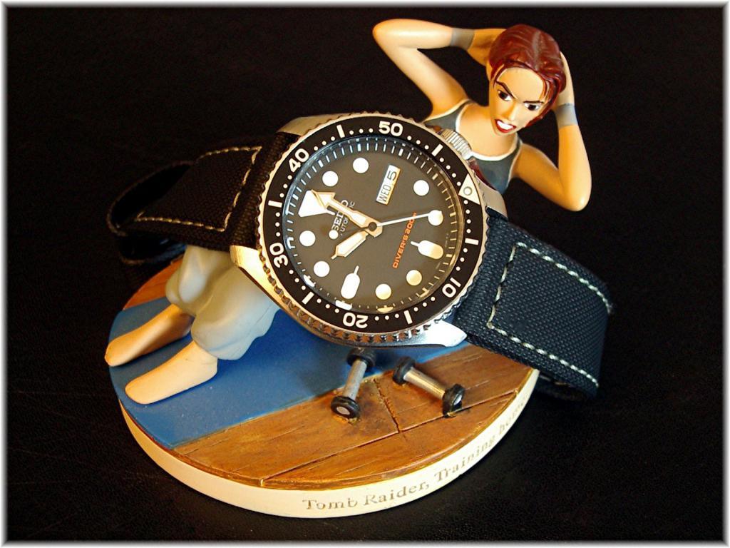 changer le bracelet  des ma SEIKO diver 200  496961Divers_Lara