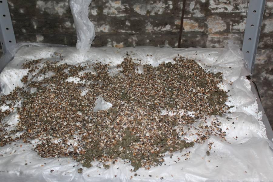 réalisation de pierres artificielle pour récifale 637722PXR_IMG_0012