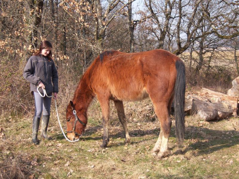 Tornade Dairpet et Claire (2009) 690598100_0982