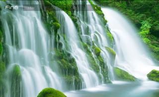 [Emission] Faut pas rêver - spécial Japon - Vendredi 23 Juillet 692646fine_japan_water