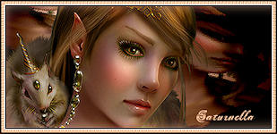halloween 699907signature_elfe_ecureuil_saturnella