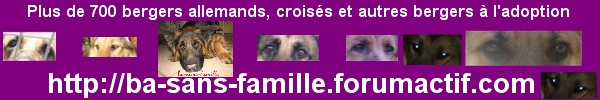 POST CLOTURE     HELP GAMELLES !!!!!! - Page 2 759948basansfamille