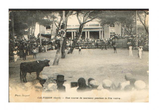 CALVISSON course dans les années 1900 811683CARTE14
