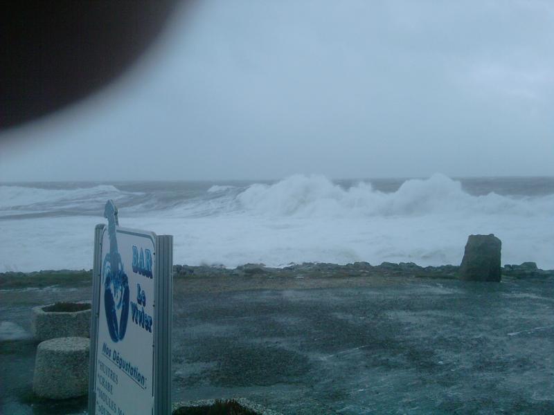 Tempête 24 fevrier dans le Morbihan 876374P240210_14.44__01_
