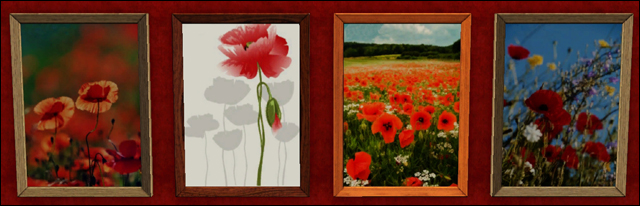 Galerie d'3lodiie !  891448tableauxcoquelicot1