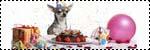 Forum Chihuahua : Mini Dog's Chihuahua 995481icone_son_anniv
