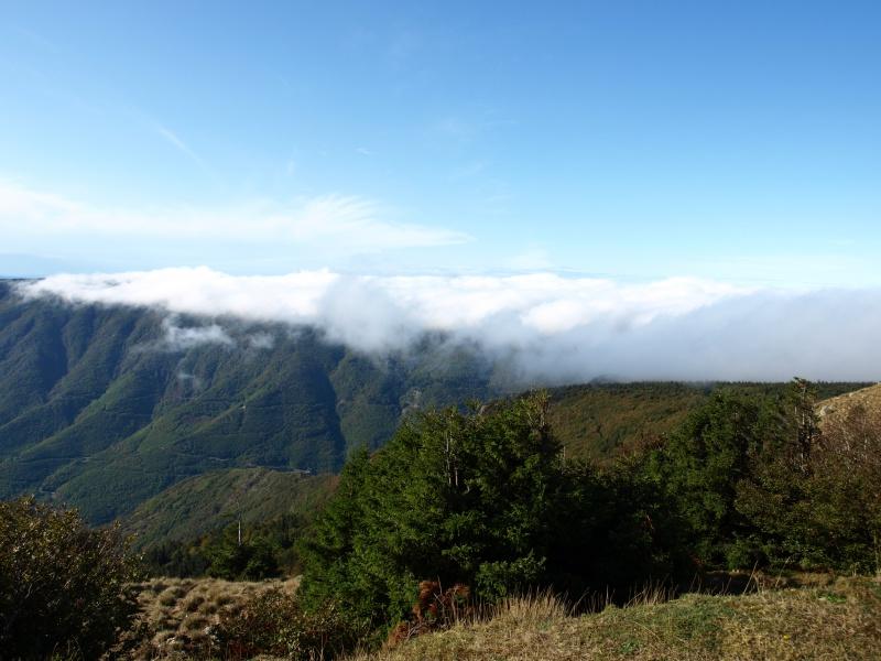 Les Cevennes autour du Mt Aigoual 121738P1012243