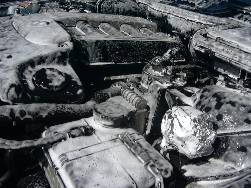 [BMW 530 d E39] Renaissance d'un Cosmos Schwarz Metallic 123807P1000464