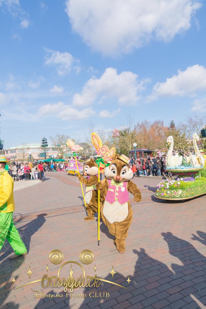Festival du Printemps du 1er mars au 31 mai 2015 - Disneyland Park  - Page 10 124100dfc27
